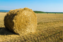 Twisted hay on the field in summer Stock Photography