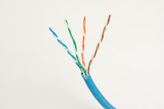 Twisted networking pairs. Four pairs of exposed wires coming from a blue ethernet networking cable Royalty Free Stock Photos