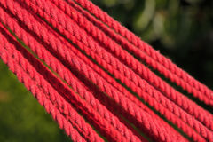 Twisted Red Rope Stock Image