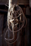 Twisted rope hanging on a wooden pole in the barn Royalty Free Stock Image