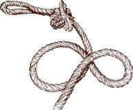 Twisted rope. Vector image of a twisted rope Royalty Free Stock Photo