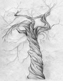 Twisted tree. Hand drawn pencil sketch of a twisted tree with curved branches and no leaves Royalty Free Stock Photos