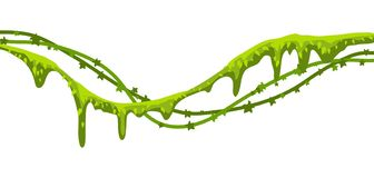 Twisted wild lianas branches banner. Jungle vines plants. Woody natural tropical rainforest stock illustration