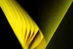 Twisted Yellow Paper Background Royalty Free Stock Photo