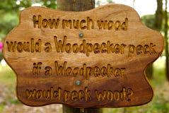 Twister языка Woodpecker Стоковая Фотография