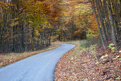 Twisting Autumn road Royalty Free Stock Photos