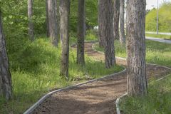 Twisting pathway among trees in the park. Twisting pathway among trees in the park Royalty Free Stock Photos