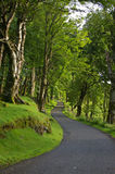 Twisting road. A twisting scottish road at dawn stock image
