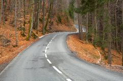 Twisting road. To a wood Stock Photos