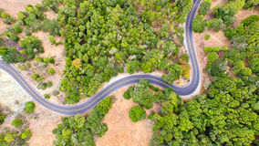 Twisting road among trees. Aerial of twisting road through the trees Royalty Free Stock Photos