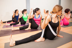 Twisting sage pose in yoga class. Large group doing the twisting sage pose in a real yoga class Royalty Free Stock Images