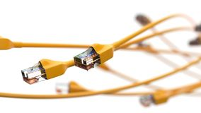 Twisting yellow internet cables. conceptual 3d illustration of ethernet cable and rj-45 plug. With white background. suitable for any internet, technolgy Stock Image