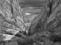 Cottonwood Canyon Narrows royalty free stock photo