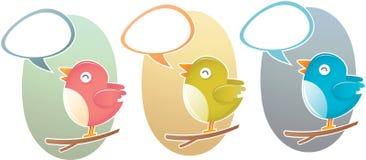 twitter вала петь птицы Стоковые Фотографии RF