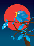 Twitter. The blue collor twitter and follow me text Royalty Free Stock Photography