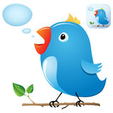 Twitter Bird. From my birds collection Royalty Free Stock Photo