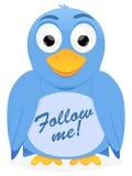 Twitter Bird Stock Photos