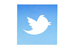 Twitter bird. Displayed on a computer screen royalty free stock image