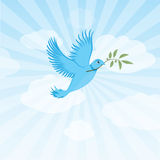 Twitter bird - peace dove. Twitter bird or peace dove. blue with and olive branch. Messaging through tweets and fighting for peace and freedom. Metaphor for Royalty Free Stock Photos