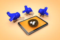 Twitter birds. Look at the tablet Stock Photo