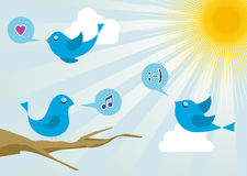 Twitter birds at social media sunrise. Twitter birds morning communication. Social media network connection concept Royalty Free Stock Photos