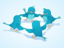 Twitter birds social network illustration Stock Images