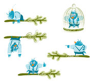 Twitter blue birds set. Twitter blue birds on the branch in different poses. EPS 8 organized vector illustration. No effects Royalty Free Stock Photo