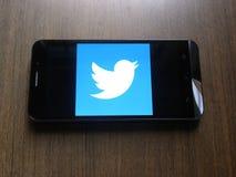 Twitter på mobiltelefonen fotografering för bildbyråer