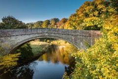 Twizelbrug in de Herfst stock afbeelding