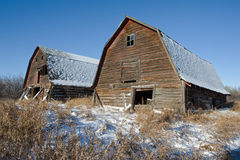 Two abandoned barns in winter Royalty Free Stock Photos