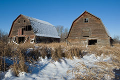 Two abandoned barns in winter Stock Images