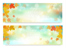 Two abstract autumn banners with color leaves. Royalty Free Stock Images