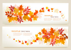 Two abstract autumn banners with colorful leaves Royalty Free Stock Photo