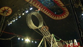 Two acrobat without insurance risk. Under the big top stock video