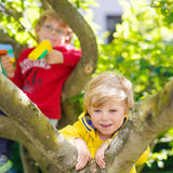 Two active little kid boys enjoying climbing on tree Royalty Free Stock Photos