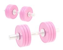 Two adjustable pink dumbbell composition Stock Images