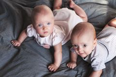 Two adorable babes a boy and a girl are playing on the bed on a gray background. Brother and sister. Twins. Selective focus. Two adorable babes a boy and a girl stock photography
