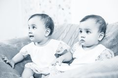 Two adorable baby twins sitting in the chair. Cute baby girls Stock Photos
