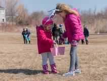 Two adorable blonde Caucasian sisters wearing with bunny`s ears are on the meadow participate in Easter Egg Hunting. One sister sh. Ows eggs candy in her basket royalty free stock photo