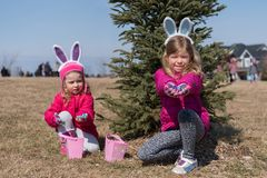 Two adorable blonde Caucasian sisters wearing with bunny`s ears under the fir on the meadow participate in Easter Egg Hunting. stock photos
