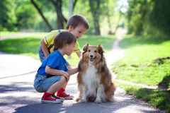 Two adorable boys, brothers, caressing cute dog in the park Stock Image