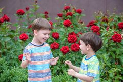 Two adorable brothers kids boys playing outdoors together Stock Photo