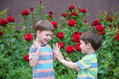 Two adorable brothers kids boys playing outdoors together Stock Photos