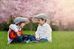 Two adorable caucasian boys in a blooming cherry tree garden, pl Stock Image