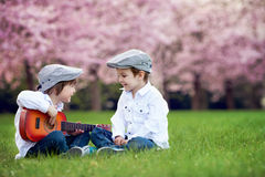 Two adorable caucasian boys in a blooming cherry tree garden, pl Stock Images