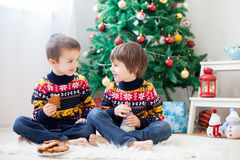 Free Two Adorable Children, Boy Brothers, Eating Cookies And Drinking Royalty Free Stock Photos - 77897818