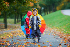 Two adorable children, boy brothers, playing in park with umbrel Royalty Free Stock Photo