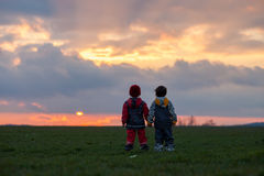 Two adorable children, boy brothers, watching beautiful splendid Royalty Free Stock Photo