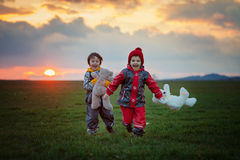 Two adorable children, boy brothers, watching beautiful splendid. Sunset over a green field, holding teddy bears, springtime Royalty Free Stock Images
