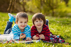 Two adorable cute caucasian boys, lying in the park in a fine su Royalty Free Stock Images